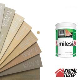 Milesi XGT 1002 | Festék
